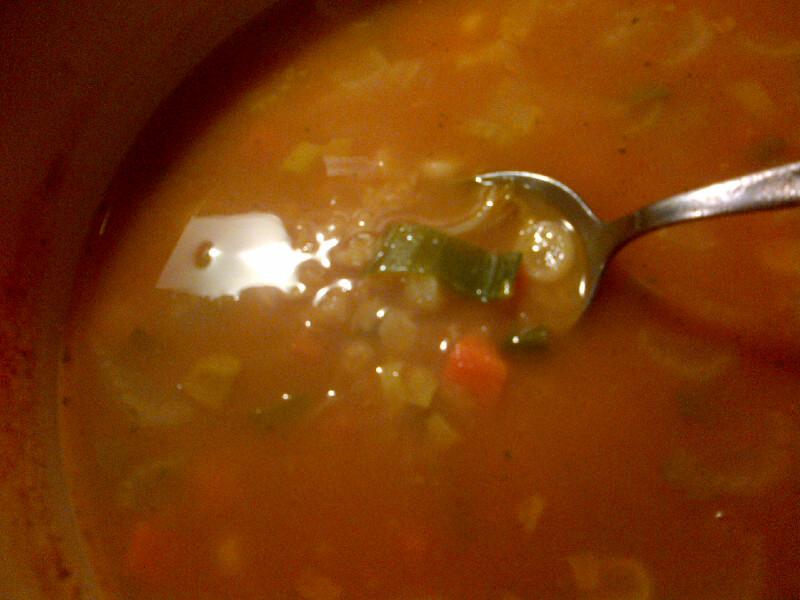 photo of red lentil soup