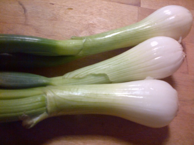 photo of spring onions