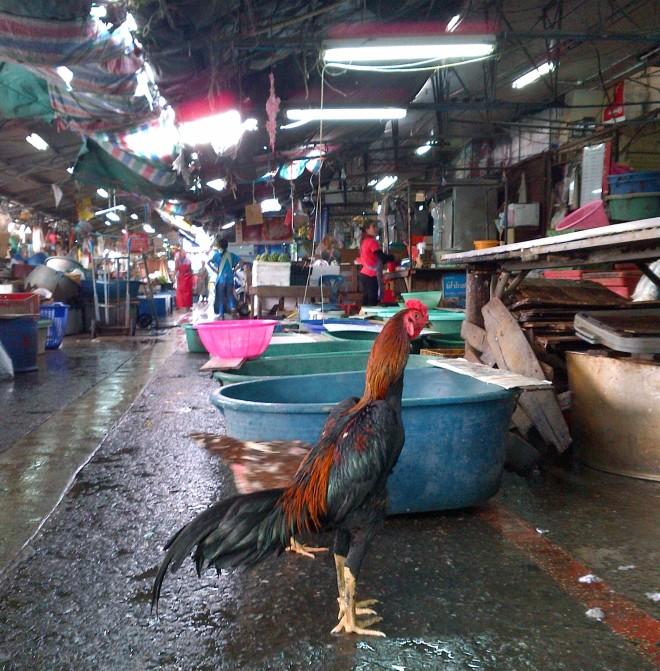 photo of Thai market