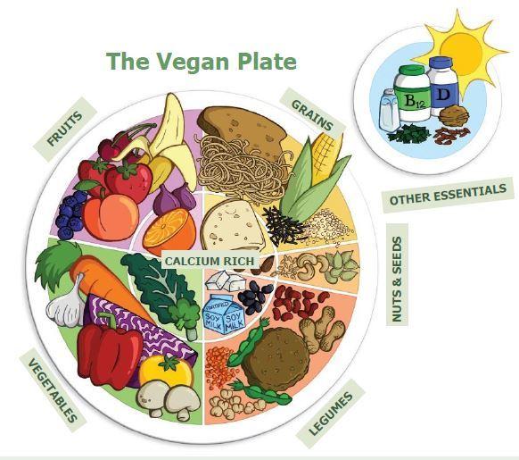 veganplate2