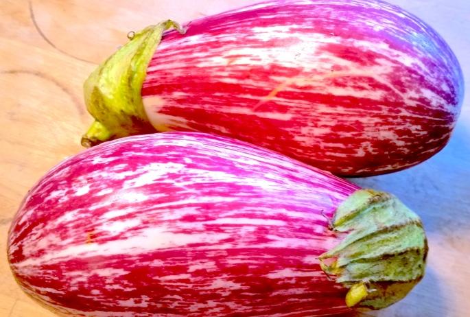 photo, eggplants
