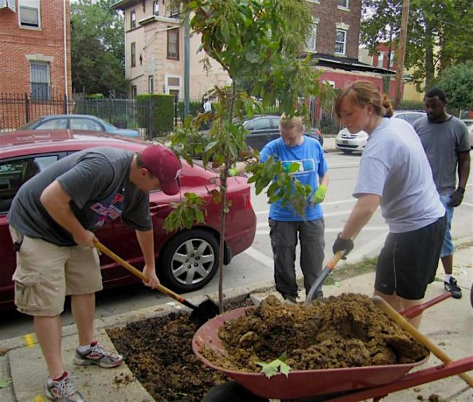 Photo of neighborhood tree planting