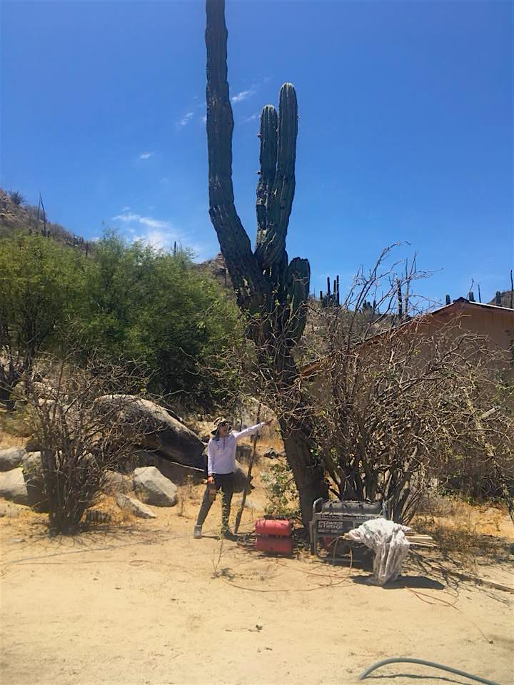 Photo of me with a giant cactus