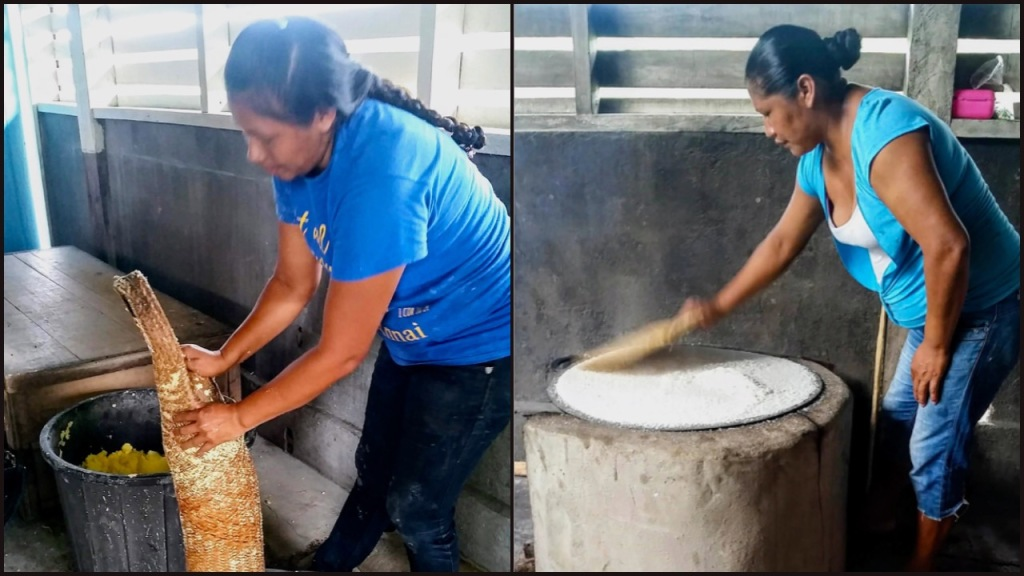 Two images of cassava preparation: squeezing out poison and making cassava bread.